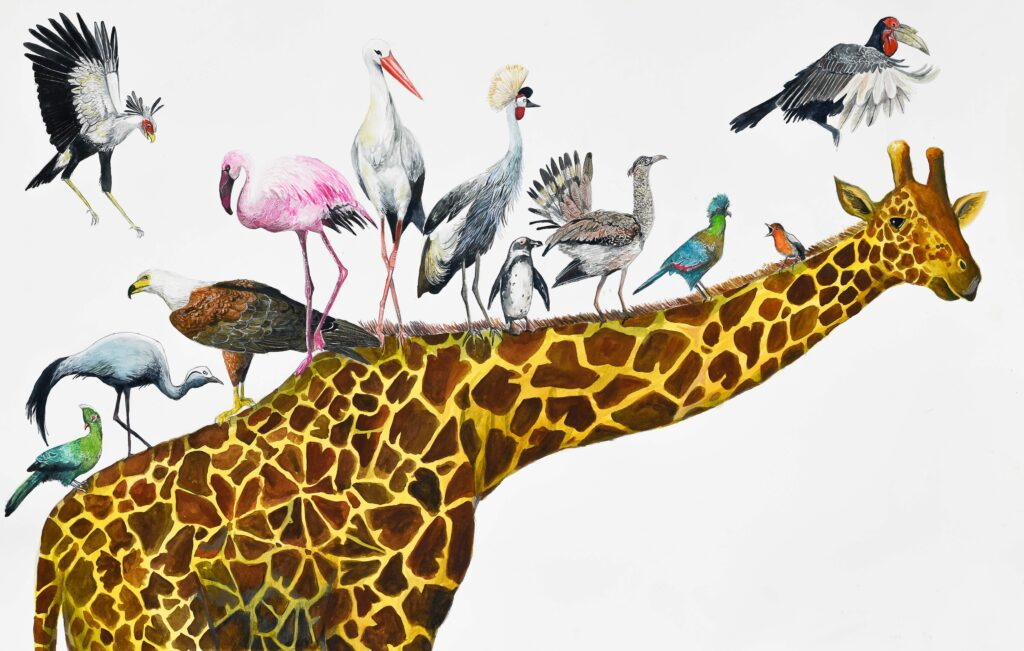 """Giraffe. """"The Languages of South Africa by Andrés Silva Vignoli"""